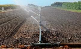 Uso agua nuevos sistemas productivos