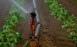 tecnología ayuda ahorrar al campo 20 y 30% agua riego tradicional