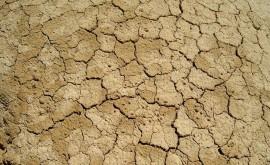 ¿Cómo afectará cambio climático disponibilidad agua América Central?