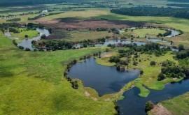 victoria planeta: compromiso proteger gigantesca turbera