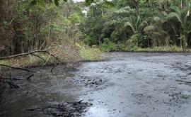 afecciones salud derrames petroleros, estudio