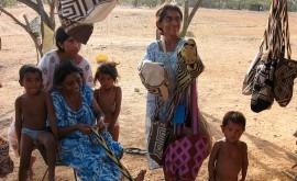 Exhumarán cadáveres 15 niños Guayúu confirmar desnutrición falta agua