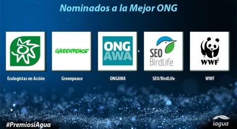Cinco candidatas se disputan ser mejor ONG 2017