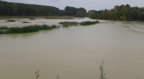 CHE Proyecto LIFE+ Territorio Visón, proyecto nominado European Riverprize