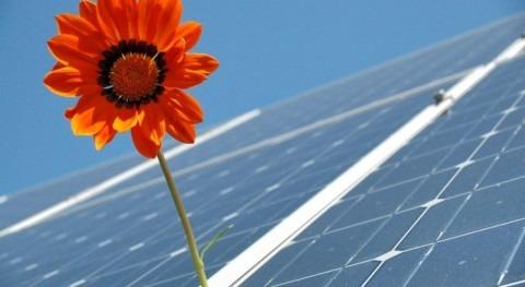 Creando futuro cero emisiones netas carbono