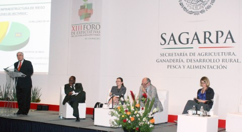 Conagua aplica diferentes medidas mitigación efectos cambio climático agricultura