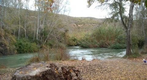 Voluntarios ambientales conocerán y recuperarán bosque ribera reserva Cañaverosa