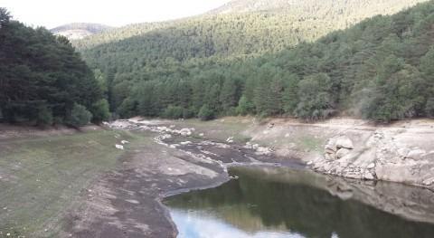 terquedad agua y flexibilidad estadísticas