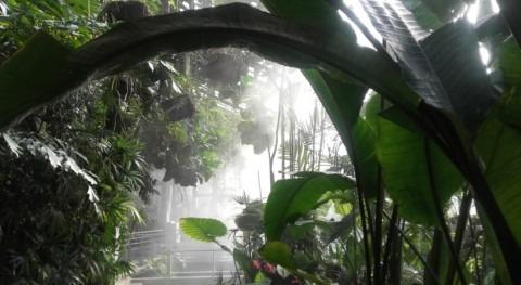 Claves hídricas Real Jardín Botánico