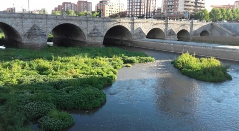 Madrid Río (I): Aire fresco y arenas fértiles o cómo disponer refrigerador natural