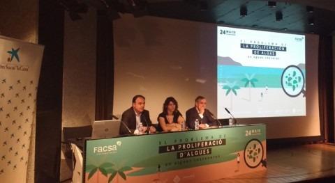 Expertos analizan Palma, mano FACSA, problema proliferación algas
