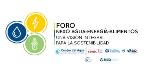 Expertos integrarán nueva visión Centro Agua foro NEXO