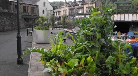 COP21: muchas ciudades se han adelantado, sigamos ejemplo