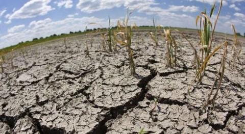 Agua Sólida estará presente Angola través importador local