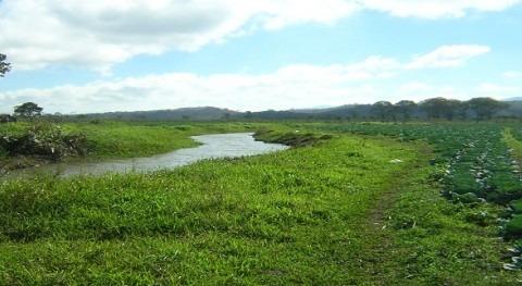 Chile participará XXVI Reunión Ordinaria Consejo Agropecuario Sur