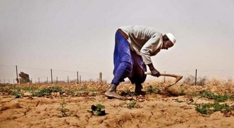 Noruega contribuye 10 millones dólares apoyar servicios climáticos destinados adaptación África