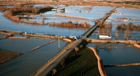 El Ebro a su paso por Novillas, Zaragoza (David Novillas/Wikipedia)