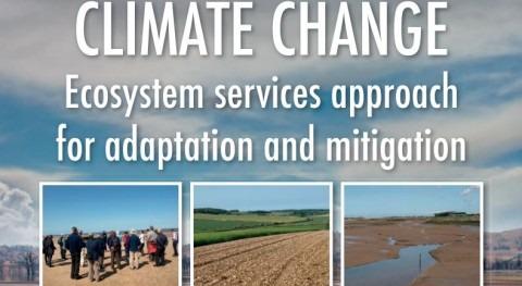 Servicios ecosistémicos adaptación y mitigación cambio climático