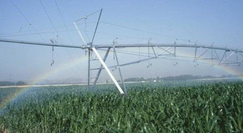 Más 67 millones dólares apoyo agricultores Valle Mexicali