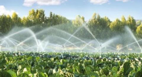 Efectos positivos y negativos regadío suelos