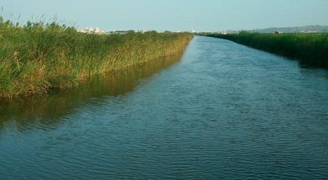 regantes Sabina ahorran 20% consumo agua tecnología Suez