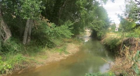 Adjudicada mejora dinámica fluvial río Huerva provincia Zaragoza
