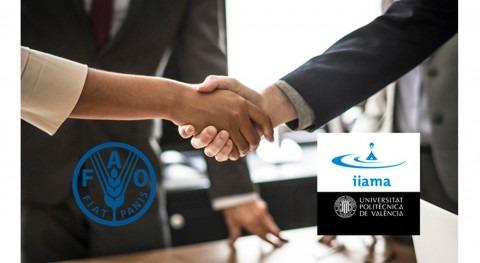IIAMA se reúne FAO poner marcha convenio marco colaboración