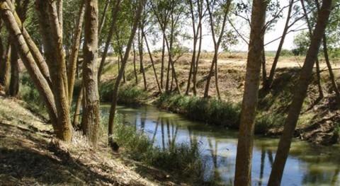 Optimizar gestión sostenible acuíferos asegurar nuestro futuro hídrico