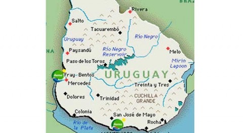 Aema consolida presencia Uruguay