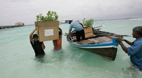 África ayuda islas adaptarse frente al cambio climático
