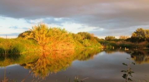 WWF y Agencia Balear Agua diseñan plan mejorar biodiversidad 28 depuradoras