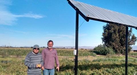 Agricultura fotovoltaica, forma ahorrar agua produciendo energía