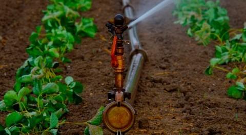Consejo Europeo acuerda orientación general reutilización agua riego agrícola