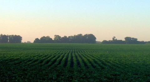 proyecto RegaDIOX buscará gestión sostenible agricultura regadío Navarra