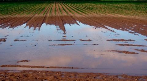estudio evalúa resistencia antibióticos aguas residuales tratadas agricultura