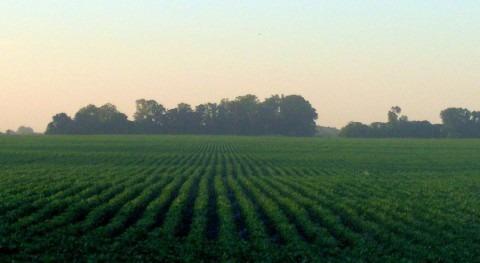 BID aprueba fondo agricultura climáticamente inteligente América Latina y Caribe