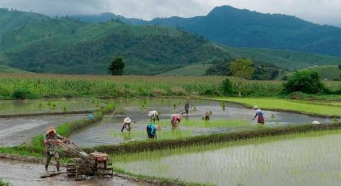 ¿Cómo cumplir compromisos frente al cambio climático sectores agrícolas?