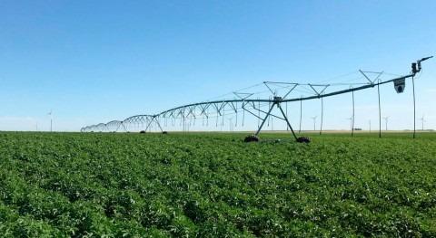 Nuevo Regadío Forum: agua que nos da comer