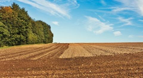 ¿Cómo influirá cambio climático agricultura europea 2030?