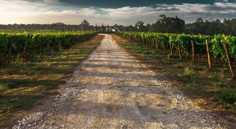 gestión riesgos, clave sostenibilidad y resiliencia agricultura europea