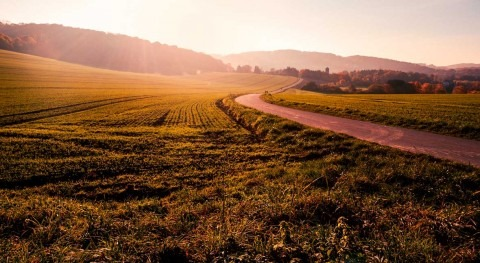 cambio climático amenaza futuro agricultura Europa
