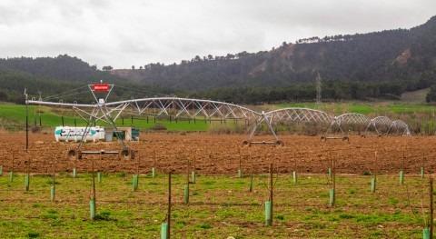 evolución agricultura y agua y relación ODS