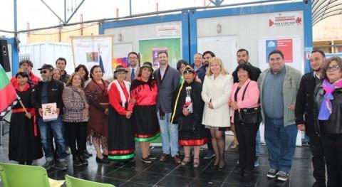 región chilena Chañaral cultivará hortalizas y plantas medicinales agua neblina