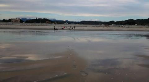 Detectada nueva fuente radiactividad agua ligada al desastre Fukushima