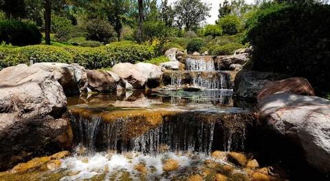 retos descontaminar agua México