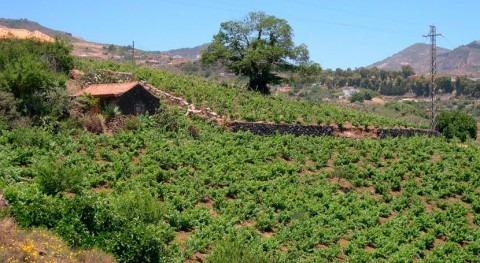 ¿Cómo convertir agua generada hogares agrícola y exportarlo países desarrollo?