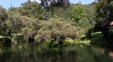Agua, sustentabilidad y desarrollo comunitario