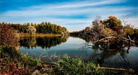 agua y temperatura, claves controlar ciclo carbono Tierra