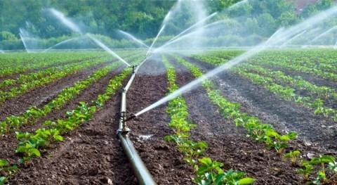 """Marruecos """"Agua agricultura y bosques"""""""