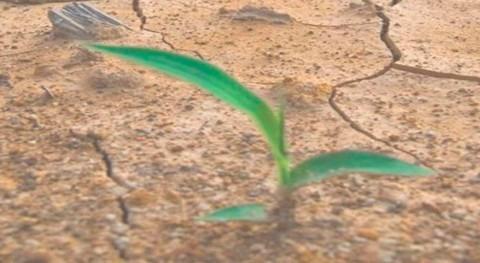 demanda agua Cataluña aumentará 25% 2050 debido al cambio climático